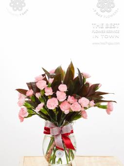 Cẩm chướng hồng