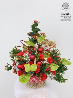 Mùa giáng sinh