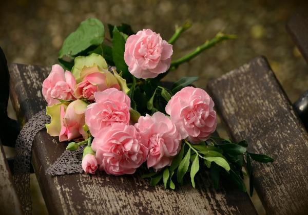 Nói thật đi, bạn yêu hoa hồng đúng không?- Hoa 7 ngày