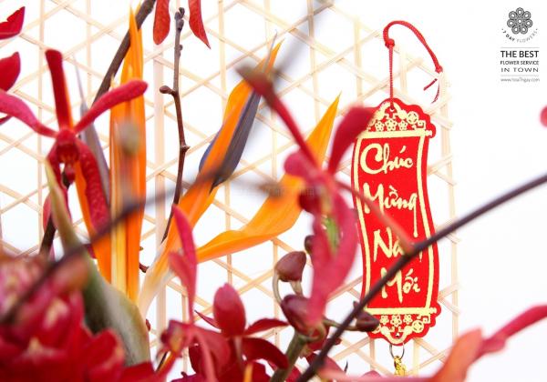 Những loài hoa Lan chơi tết cực sang chảnh!- Hoa 7 Ngày
