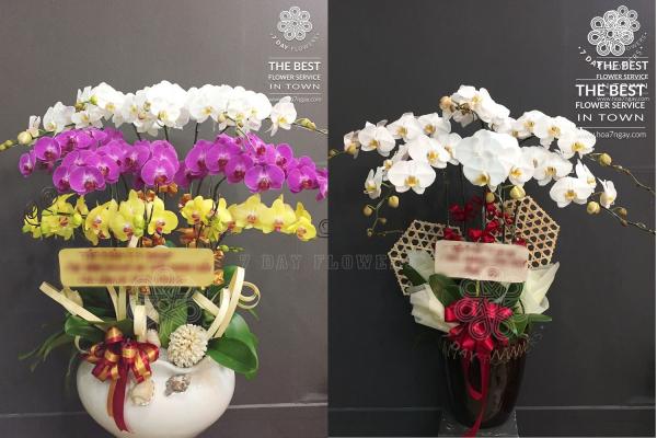 Chọn hoa tươi giá rẻ tp.hcm ngay tại Hoa 7 Ngày