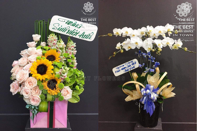Làm sao mua hoa sinh nhật tp.HCM đẹp nhất, Hoa 7 Ngày