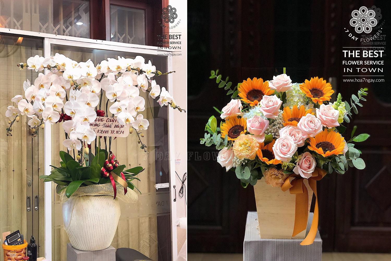 Mẹo chọn hoa phù hợp với văn phòng với Hoa 7 Ngày