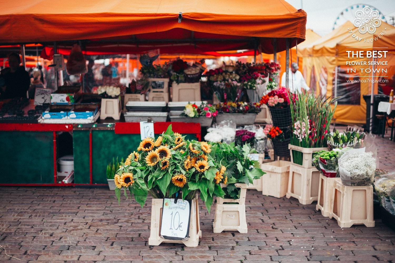 Shop hoa tươi giá rẻ quận 10  Giao hoa miễn phí- Hoa 7 Ngày